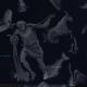 stellarium-040