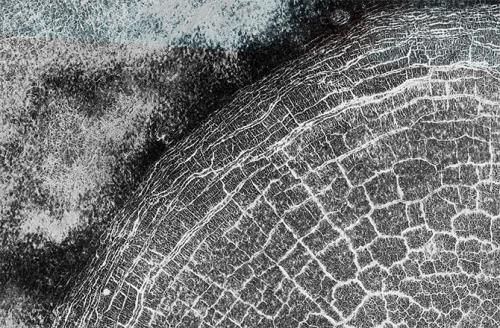 mars-mro-cracked-crater