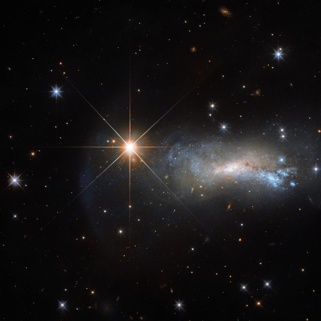 "In space, being outshone is an occupational hazard. This NASA/ESA Hubble Space Telescope image captures a galaxy named NGC 7250. Despite being remarkable in its own right — it has bright bursts of star formation and recorded supernova explosions — it blends into the background somewhat thanks to the gloriously bright star hogging the limelight next to it.  This bright object is a single and little-studied star named TYC 3203-450-1, located in the constellation of Lacerta (The Lizard), much closer than the much more distant galaxy. Only this way a normal star can outshine an entire galaxy, consisting of billions of stars. Astronomers studying distant objects call these stars ""foreground stars"" and they are often not very happy about them, as their bright light is contaminating the faint light from the more distant and interesting objects they actually want to study. In this case TYC 3203-450-1 million times closer than NGC 7250 which lies over 45 million light-years away from us. Would the star be the same distance as NGC 7250, it would hardly be visible in this image."